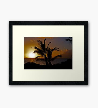 Palmtree Sunset Framed Print