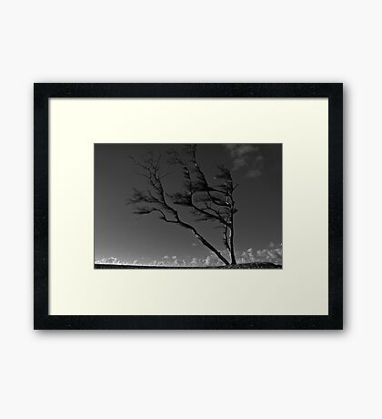 Prevailing Westerly Winds Framed Print