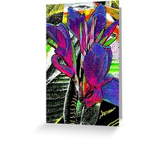 Passionate Moods  Greeting Card