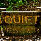 Shhhh... by Mark Iocchelli