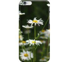 Daisy Days iPhone Case/Skin