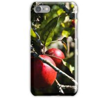 Apples iPhone Case iPhone Case/Skin
