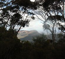 The Beautiful Blue Mountains by Snakey