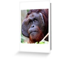 The Alpha Male Greeting Card