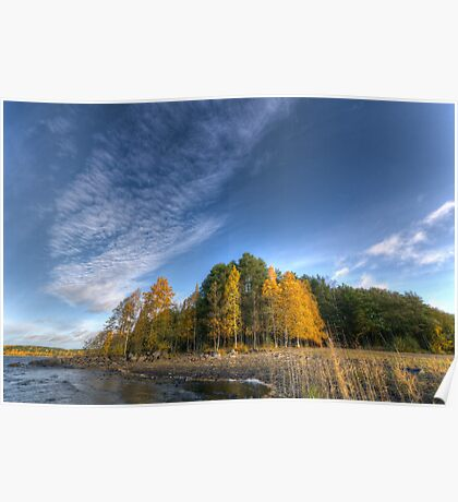 Autumn Scape I Poster