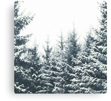 In Winter Canvas Print