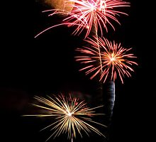 Fireworks by Mark Ingram