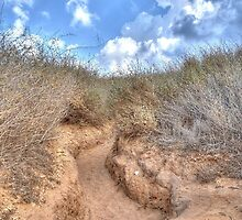 Blue sky over a dune by Ori Akstein