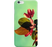 Vintage Blossom iPhone Case/Skin