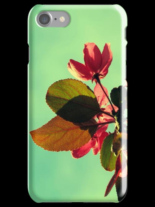 Vintage Blossom by Kitsmumma