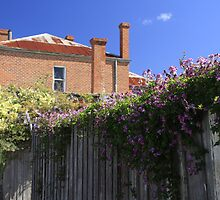 Old Brick Building, Wooden Fence and Flowers by Noel Elliot