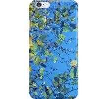 Birch Leaves iPhone Case/Skin