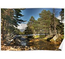 The Cairngorm Club Footbridge Poster