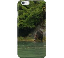 Grizzly Bear, Knight Inlet iPhone Case/Skin