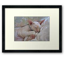 Oliver Sleeping Framed Print
