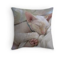Oliver Sleeping Throw Pillow