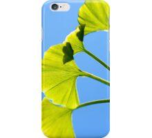 Ginkgo (iPhone & iPod case) iPhone Case/Skin