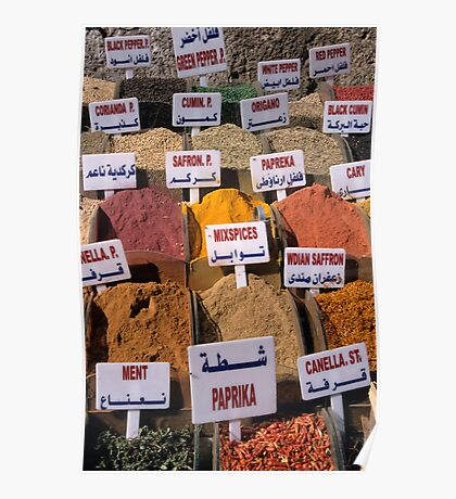 Oregano, mint, paprika, coriander, cumin, saffron spices and herbs on market stall, close-up Poster