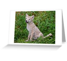 Ready for Obedience Training Greeting Card