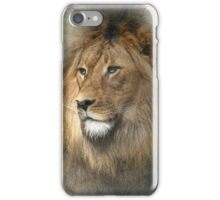 African Dreaming iPhone Case/Skin
