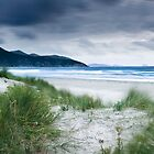 Passing Storm, Wilsons Promontory, Victoria by Christopher Ashdown