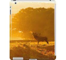 Sunrise Stag iPad Case/Skin