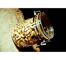 Nuts...: On feature work Photographic Print