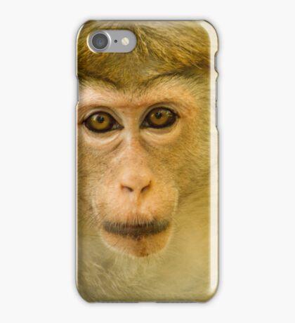 Monkey Stare iPhone Case/Skin