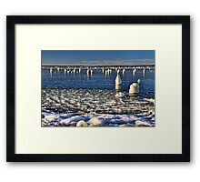 An Unusual Beach Sight Framed Print