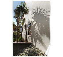 Palms by the wall Poster