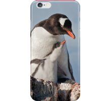 Gentoo and Chick iPhone Case/Skin