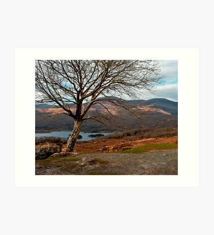 kerry hills Art Print