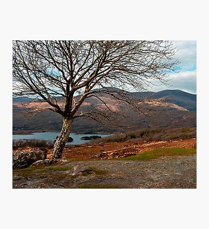 kerry hills Photographic Print
