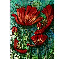 Red Poppies on Green Photographic Print