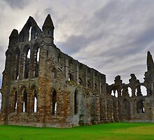 Yorkshire: Whitby Abbey by Rob Parsons