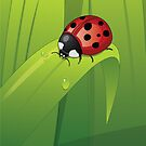 Ladybug iPhone Cover by vividpeach
