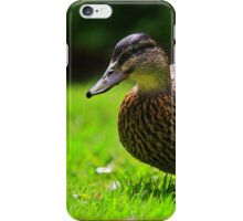 Duck - iPhone Case iPhone Case/Skin