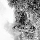 Engine #10 by © Brady-Hughes- Beasley Archives