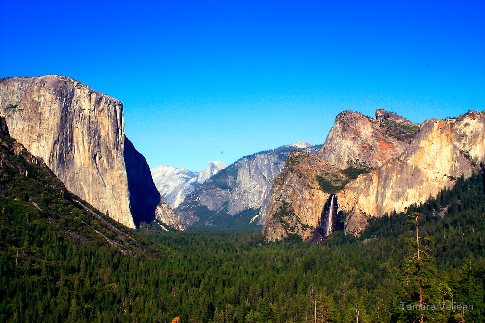 Yosemite Valley Vista by Tamara Valjean