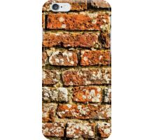Brick Wall iPhone Case iPhone Case/Skin