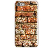Brick Wall iPhone Case iPhone Case/Skin