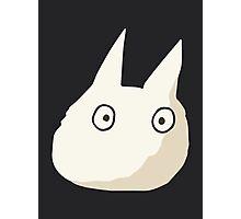 Small White Totoro - No Outline Photographic Print