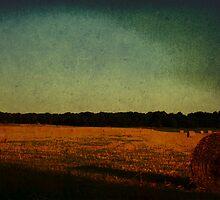 Hay, Hay, Hay.  by tutulele