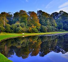 Yorkshire: Autumnal Reflections at Studley Royal Gardens by Rob Parsons