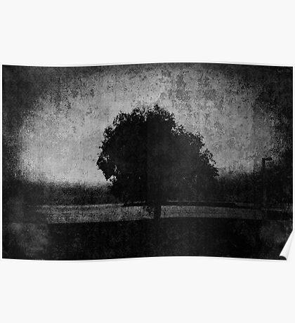 Tree. Sea. Black. White. Poster