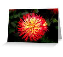 A touch of red & yellow Greeting Card