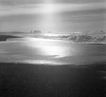 Enlightenment Light - Pistol River Beach - Oregon by Harry Snowden