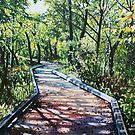 '4 MILE CREEK GREENWAY (CHARLOTTE, NC)' by Jerry Kirk