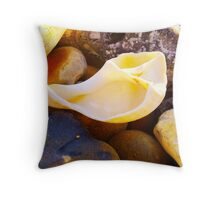 Shell on Hove Beach Throw Pillow