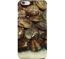 Mussels Sea Shells Seashell  iPhone Case/Skin